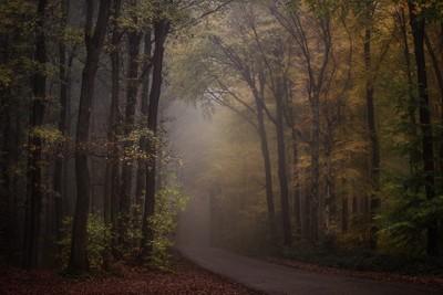 www.schauerfotografie.com by theoherbots
