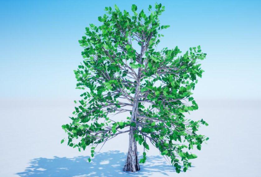 Árvores têm potencial para serem geradoras de eletricidade para nossas cidades - Engenharia é: