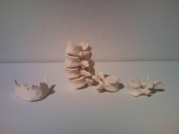Printed bones