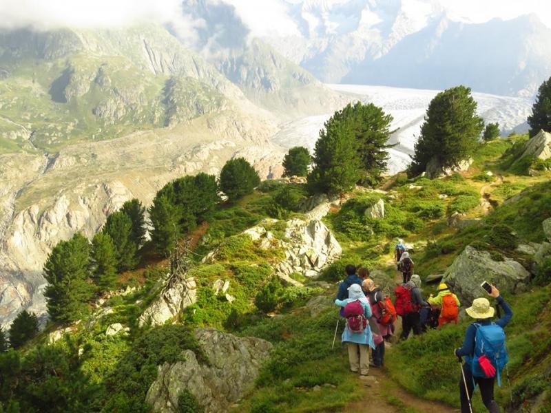瑞士阿萊奇冰川健行|健行筆記