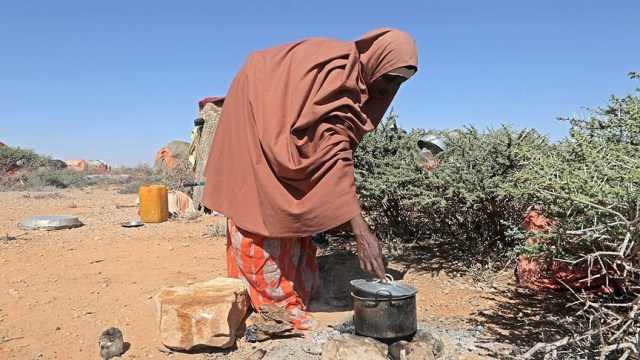 New report calls for greater food availability in Africa
