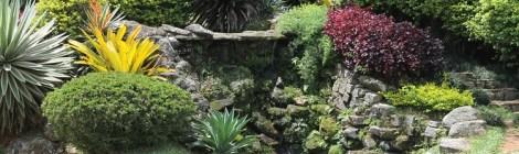 Paysage, jardins et espaces verts