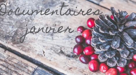 Les nouveautés de décembre et janvier