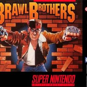 The cover art of the game Brawl Brothers.
