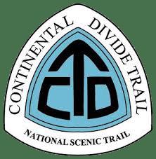 CDT Logo