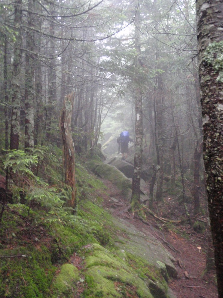 Fellow hiker Recurve in the White Mountains (2008)