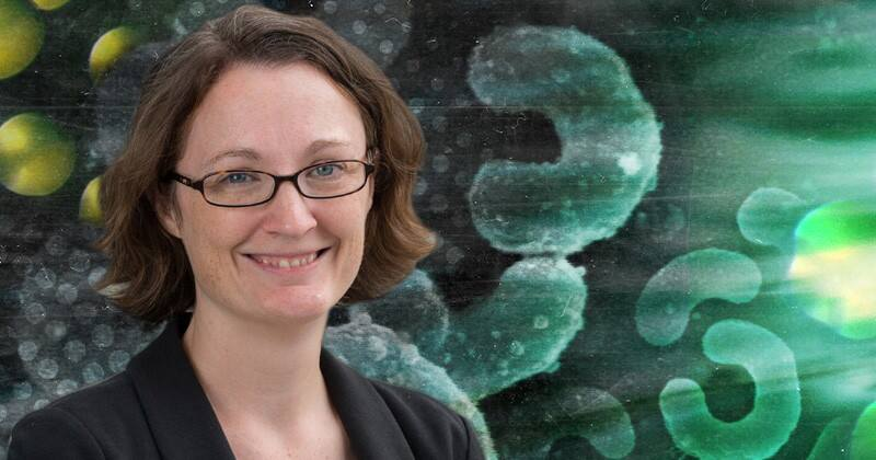 NSF grant to support genetic research of bacteria