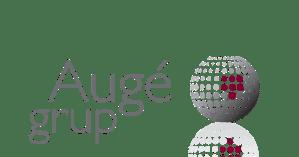 auge-grup-premis-cea-2018