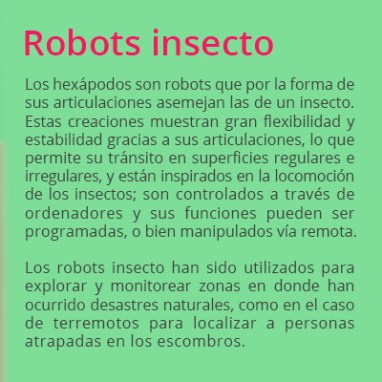 robots-insecto02