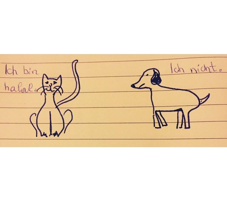 Hunde und Katzen bei muslimischen Familien?