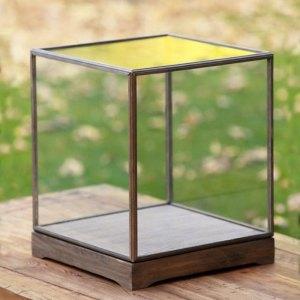 Arriendo vitrina vidrio