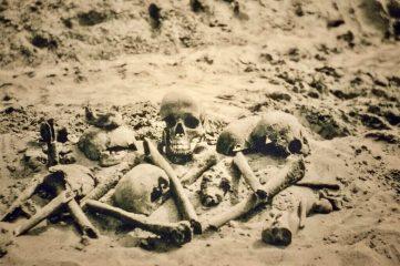 human skull and bones in dirt
