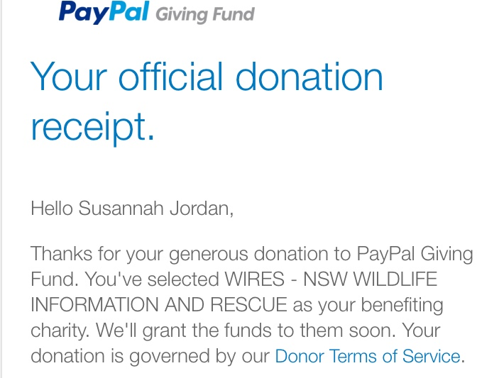 screenshot of WIRES donation receipt