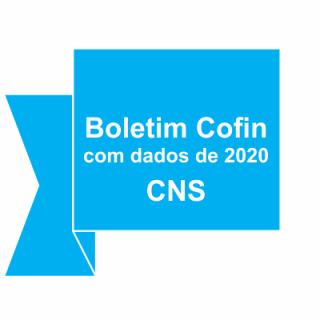 Comissão de orçamento do CNS publica Boletim Cofin com dados de encerramento de 2020