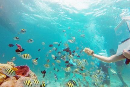 세부-해양스포츠-헬멧다이빙
