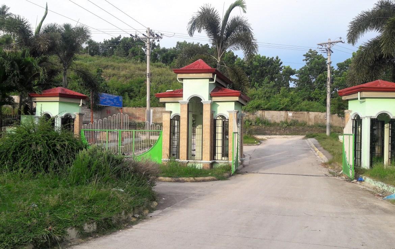 lot for sale in cebu