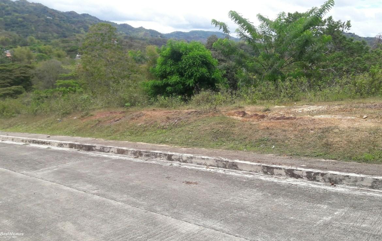 lot for sale near talamban cebu city