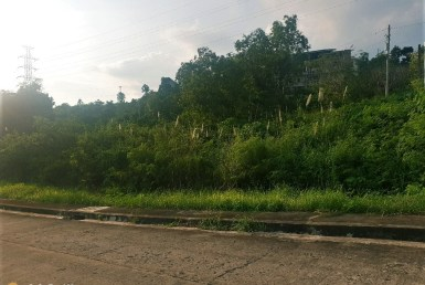 lot for sale in vista grande talisay cebu city