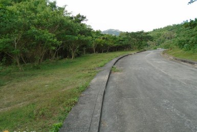 Cebu City Lot for Sale