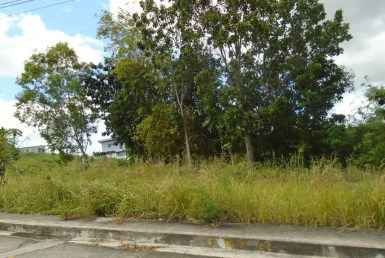 lot for sale in vista grande talisay cebu city