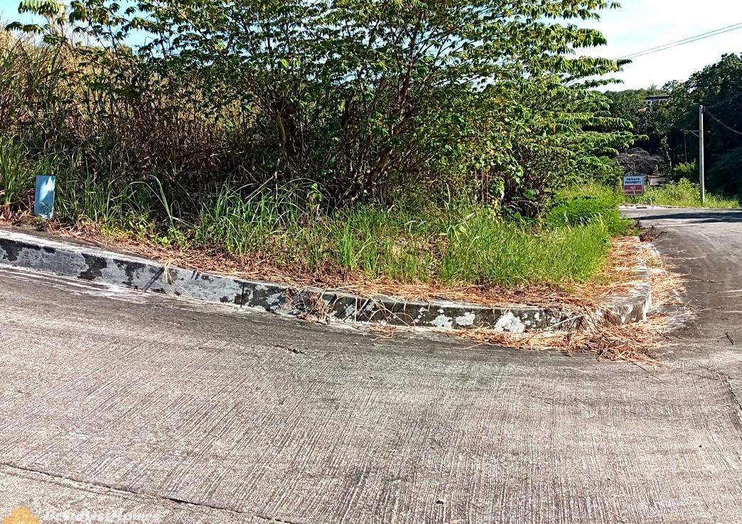 Corner Lot for Sale in Consolacion Cebu