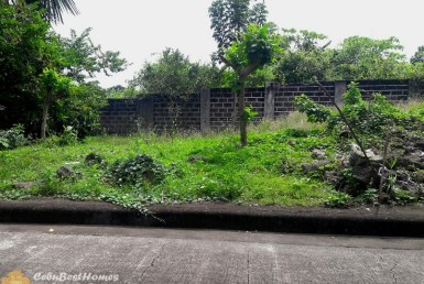 lot for sale in lapu-lapu cebu