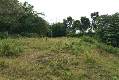 Subdivision Lot for Sale in Consolacion Cebu
