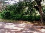 affordable lot for sale cebu city