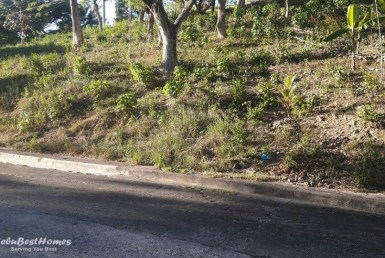 Lot for Sale in Cebu City