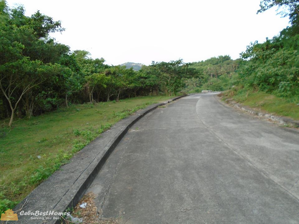Residential Lot for Sale Talamban Cebu City