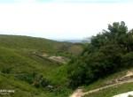 jordan-heights-the-greenery-view