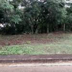 Residential Lot for Sale near Talamban Cebu City