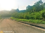 lot for sale in talisay cebu city