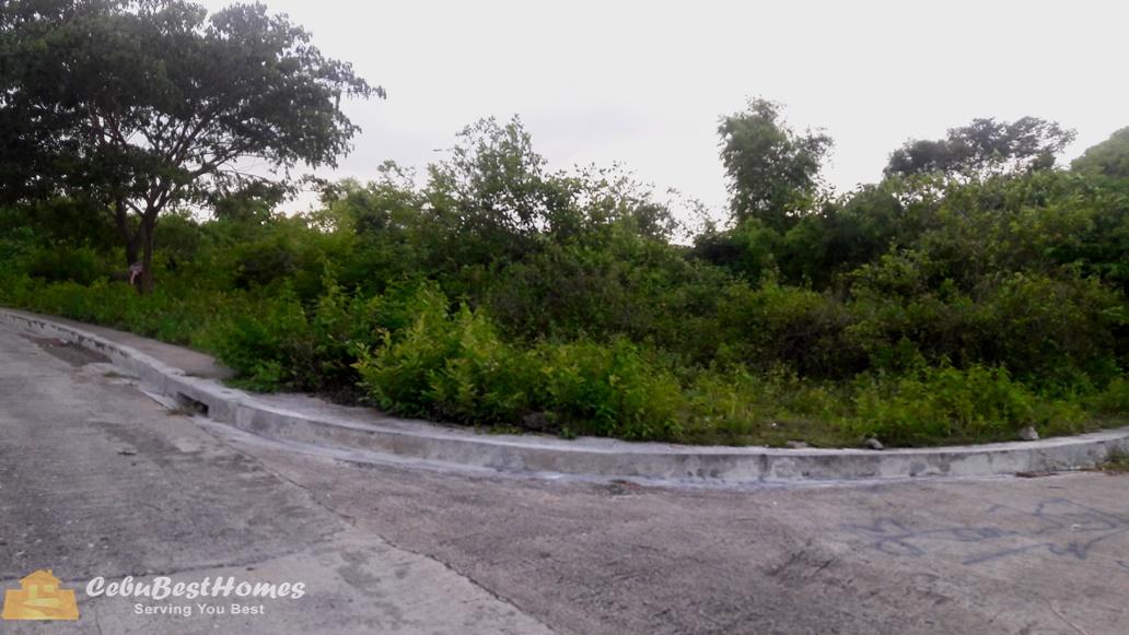 Affordable Corner Lot for Sale in Consolacion Cebu