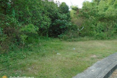 Lot for Sale in Greenwoods