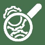 icona inspeccions controls