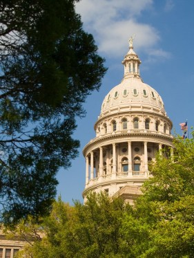 Texas Capitol with Trees by Austin Hill. https://flic.kr/p/69PhEo