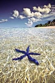 Tahiti Photo by Peter Allen