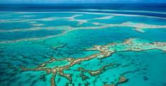 great-barrier-reef (c) australiangeographic (dot)com (dot) au