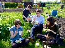 Greenhouse gardening day2