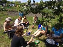 Greenhouse gardening day4