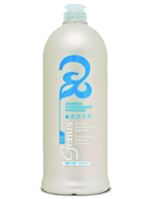 Conditioning & Repair Shampoo