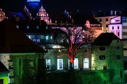 Festival Lumina. Foto: Denis Zelnik.