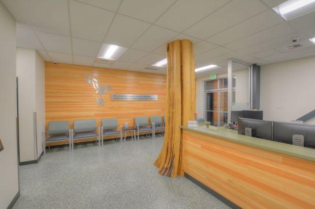 douglas fir interior t&g paneling