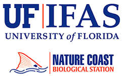 LOGO UF unnamed