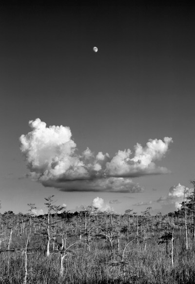 moonrise OK