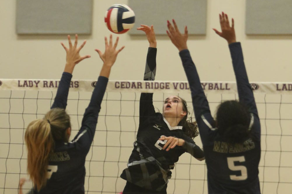 Lauren Prendeville spiking the ball on McNeil High!
