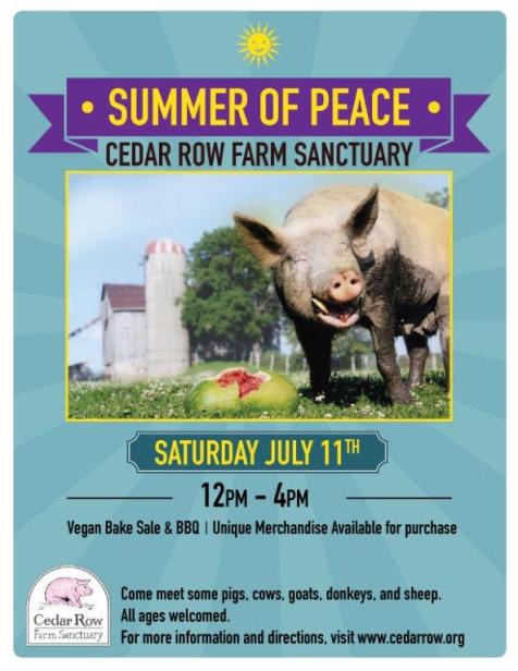 Summer-of-Peace-2015