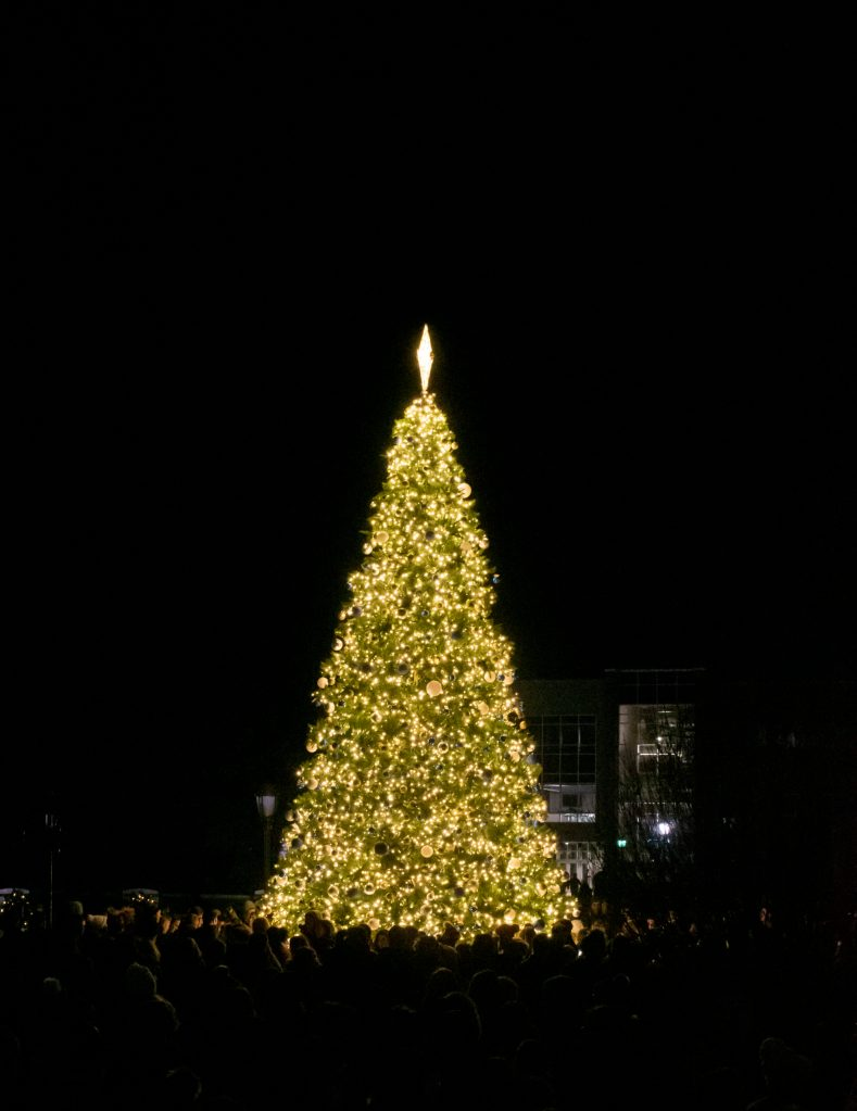 Gallery: Christmas Tree Lighting