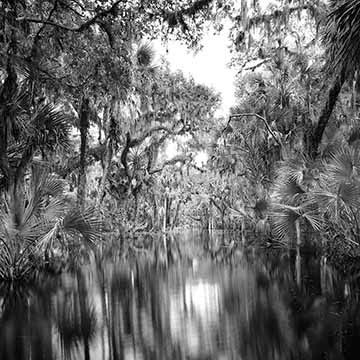 clyde butcher myakka river st armands circle events